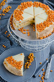 Cake of sea buckthorn stock images