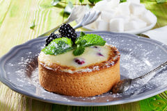 Cake of semolina blackberries, winter, holiday and. Cake of semolina with blackberries, winter, holiday and mint on a gray plate Provence in a still life dessert Royalty Free Stock Photo