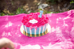 Cake smash pink cake with blue and white stripes royalty free stock images