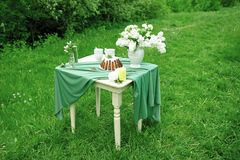 Cake with some cups on picnic table decorated with flowers, candles, vase in green field. Cake with some cups on picnic table decorated with flowers, candles Royalty Free Stock Photos