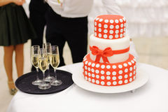 Cake with Spots Royalty Free Stock Image