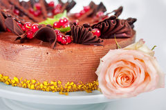 Cake with strawberries currants cherries and nuts Stock Photography