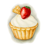 Cake with strawberries. Hand painted watercolor сake with strawberries. Vector illustration Royalty Free Stock Image
