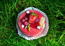 Cake with strawberry on grass Royalty Free Stock Images