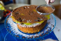 Cake with sugar powder Royalty Free Stock Photo