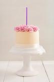 Cake with sugar roses Stock Photos