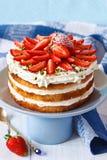 Cake. Stock Photography
