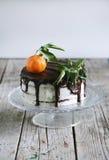 Cake with tangerine, cheese cream and chocolate glaze Royalty Free Stock Photo