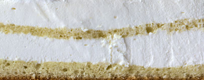 Cake texture. Texture of souffle yoghurt cake with biscuit with two levels Stock Images