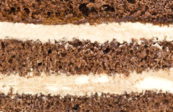 Cake texture Stock Images