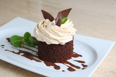 Cake ` Tiramisu ` op witte plaat Royalty-vrije Stock Afbeeldingen