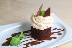 Cake ` Tiramisu ` op witte plaat Royalty-vrije Stock Foto's