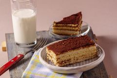 Cake tiramisu on a plate with a cup of tea on background. royalty free stock photography