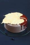 Cake van de bosbessen de Chocolade Gelaagde Mousse Stock Afbeelding