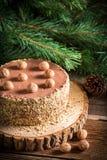 Cake van noten in bos wordt gemaakt dat Royalty-vrije Stock Afbeeldingen