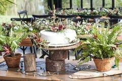 Cake voor de huwelijksviering Royalty-vrije Stock Foto's