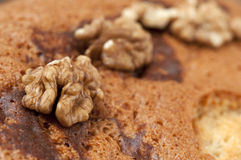 Cake walnuts Stock Images