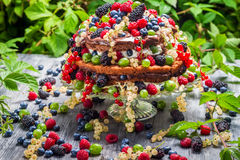 Cake wild fresh berry fruits in forest Stock Photos