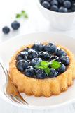 Cake With Blueberries Royalty Free Stock Images
