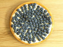 Free Cake With Blueberries Royalty Free Stock Photos - 26001378