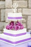 cakebröllopwhite Royaltyfri Bild