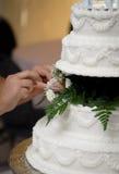 cakeförberedelsebröllop Fotografering för Bildbyråer