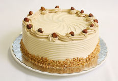 cakehasselnötmousse Royaltyfri Fotografi