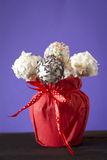 Cakepops Royalty Free Stock Image