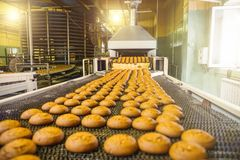 Cakes on automatic conveyor belt or line, process of baking in confectionery culinary factory or plant. Food industry. Cookie and other sweet breadstuff royalty free stock photography