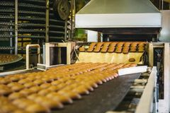 Cakes on automatic conveyor belt or line, process of baking in confectionery culinary factory or plant. Food industry Royalty Free Stock Photos