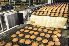 Cakes on automatic conveyor belt or line, process of baking in confectionery factory. Food industry, cookie production. Close up Royalty Free Stock Image