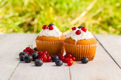 Cakes with cream Stock Image