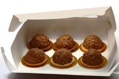 Cakes in doos Royalty-vrije Stock Afbeelding