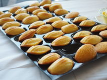 Cakes en gebakje royalty-vrije stock afbeelding