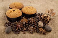 Cakes, grains of coffee and seasoning Stock Photo