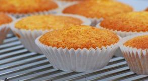 cakes som svalnar kuggetråd Royaltyfria Bilder
