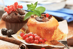 cakes sponge smakligt Arkivbild