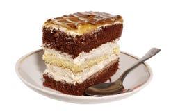 cakestycke Arkivbilder