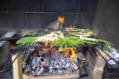 Calçots dans un barbecue Photographie stock