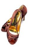 Calçados das senhoras foto de stock royalty free