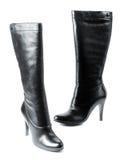Calçados fêmeas modernos novos imagens de stock