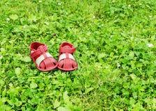 Calçados na grama Imagens de Stock Royalty Free