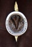 Calçando cavalos Imagens de Stock Royalty Free
