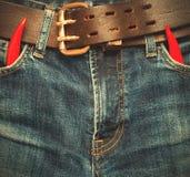 Calças de brim com pimenta de pimentão vermelho Imagens de Stock