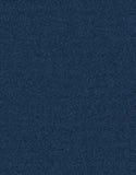 Calças de brim da tela Imagem de Stock Royalty Free