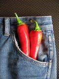 Calças de brim quentes 1 Fotografia de Stock
