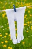 Calças justas em um clothesline Foto de Stock Royalty Free