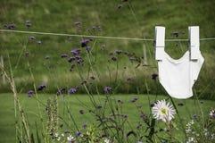 Calças que secam no clothesline Imagens de Stock