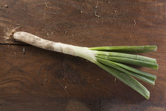 Calçot on a wooden table Stock Images