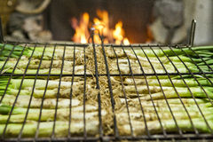 Calçots in a grill Royalty Free Stock Image